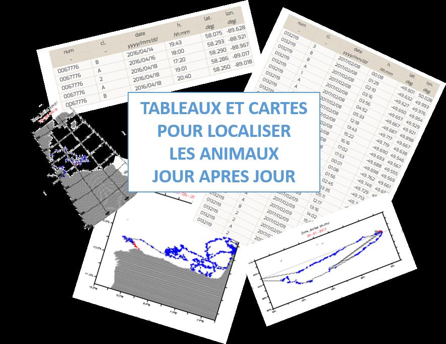 des_tableaux_et_des_cartes.png