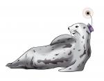 En savoir plus sur les phoques de Weddell suivis en 2009